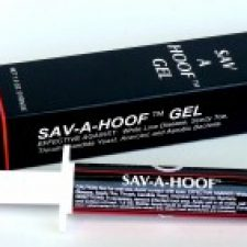 T.T. Distributors Sav-A-Hoof Gel