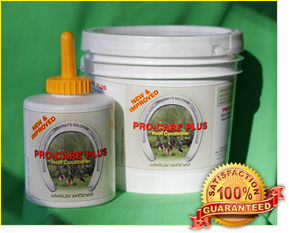 T.T. Distributors Pro Care Plus for Horses